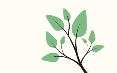 Wat is vitaliteit? Team Vitale (Lim)burgers vertelt zelf